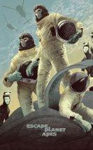 Maymunlar Cehenneminden Kaçış
